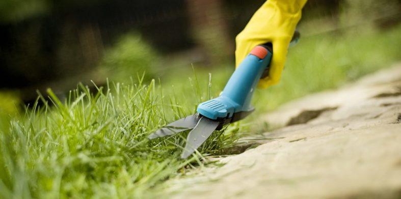 Grasschere zum Schneiden von Rasenkanten