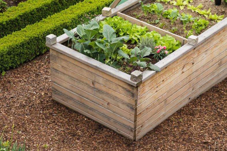 Lieblings Das Hochbeet - Gärtnern auf bequeme Art - Gartenfans.info &YD_15